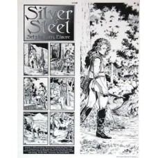 Silver and Steel set 3 portfolio by Larry Elmore D